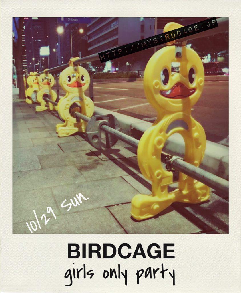 birdcage5th